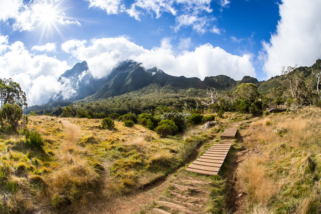 Col des boeufs, Reunion Island (2013)